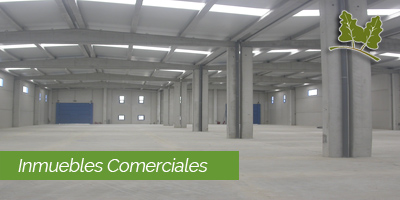 inmuebles industriales